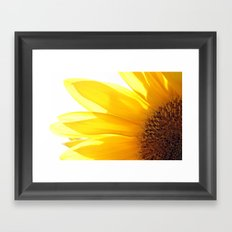 Sunflower 794 Framed Art Print