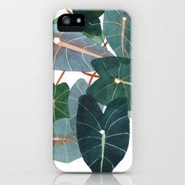 Caladiums iPhone Case