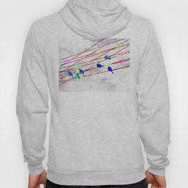Birds on the Wire Hoody