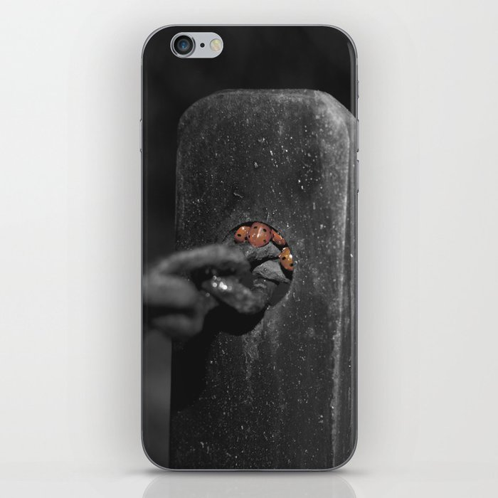 shelter from the storm... iPhone Skin