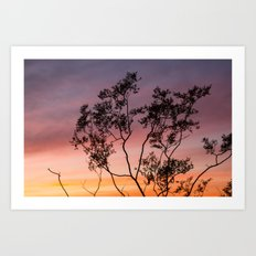 Sonoran Sky at Sunset Art Print