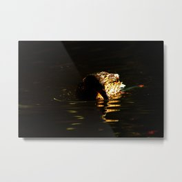 The swimming duck Metal Print