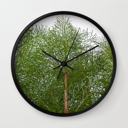 Cosmos Reaching for the Sky Wall Clock