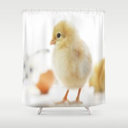 Baby of the family Cute Chicken Chick Shower Curtain