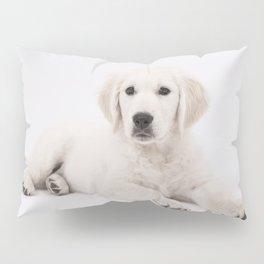 Dog-golden-retrieve Pillow Sham