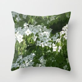 Longwood Gardens - Spring Series 244 Throw Pillow