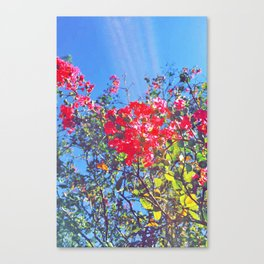Colouring Book Canvas Print
