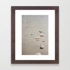 sea shells Framed Art Print