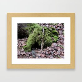Where Do The Trolls Hide? Framed Art Print
