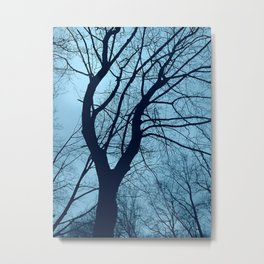 NYC trees (2012) (2), from Roberta Winters' personal archives Metal Print