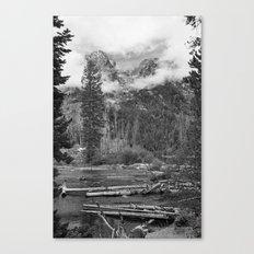 Birch Hallow, Teton Mountains Canvas Print