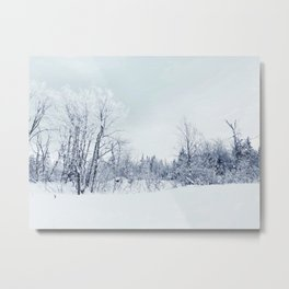 Freezing trees in a winterland decor Metal Print