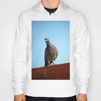 pigeon Hoodies featuring Pigeon by Lon Casler Bixby - Neoichi