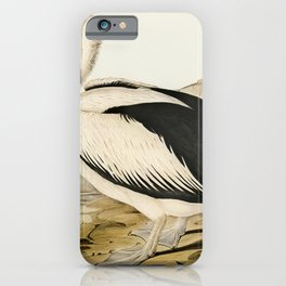 Pied oyster-catcher from Birds of America (1827) by John James Audubon etched by William Home Lizars iPhone Case