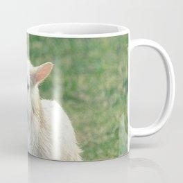 Baby Lamb Coffee Mug