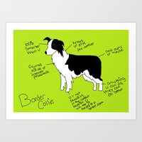 border collie Art Prints featuring Border Collie by Lindsay Beth