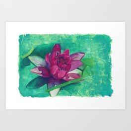 Lilly Art Print