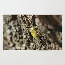 Green bug Rug