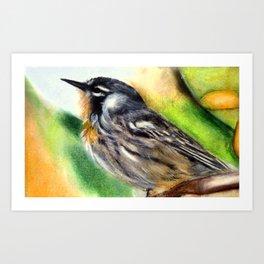Little Bird Painting Art Print