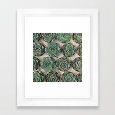Succulent Collection Framed Art Print