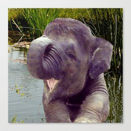 Elephant and Water Canvas Print