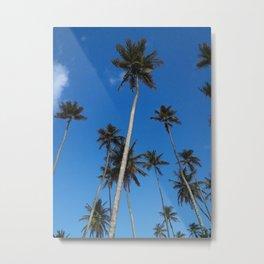Majestic Coconut Trees Metal Print
