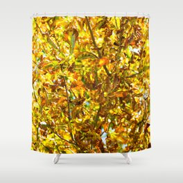 Autumn leaves pattern Shower Curtain