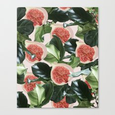 Figs & Leaves #society6 #decor #buyart Canvas Print