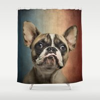 french Shower Curtains featuring French bulldog, french flag ! by Life on White Creative