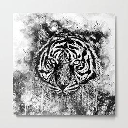 tiger head portrait wsbww Metal Print