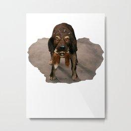 Foxtail Dog Metal Print