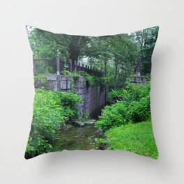 Spring Edition Throw Pillow
