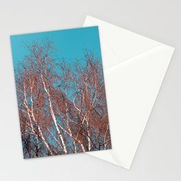 BIRCH in the AUTUMN Stationery Cards