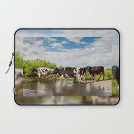 Herd of cows walking across pool Laptop Sleeve