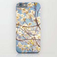 Dogwood Tree - Spring Flowering Tree Photography Slim Case iPhone 6s