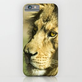 Royal and Regal Lion iPhone Case