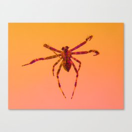 Bugged #21 Canvas Print