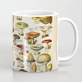 Mushrooms Botanist, Vintage Old School chart Style Coffee Mug