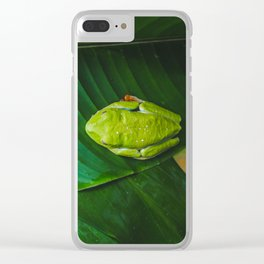Cute bright green frog with red feet sleeps on a leaf in the rainforest Clear iPhone Case