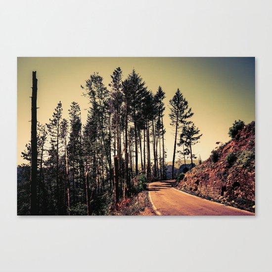 Woodland #2 Canvas Print
