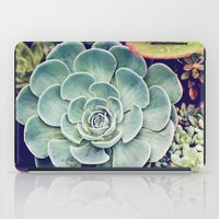 succulent iPad Cases featuring Succulent by Holli Dunn Photography