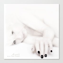 Out of the White Canvas Print