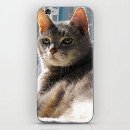 King-Cat iPhone Skin
