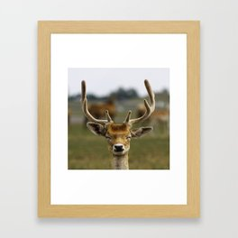 Happy Reindeer Framed Art Print