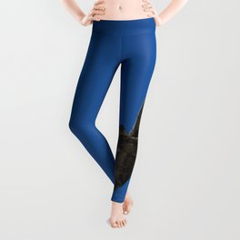 Flying Hawk Leggings