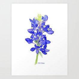 Bluebonnet Watercolor Art Print