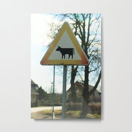 Attention cows Metal Print