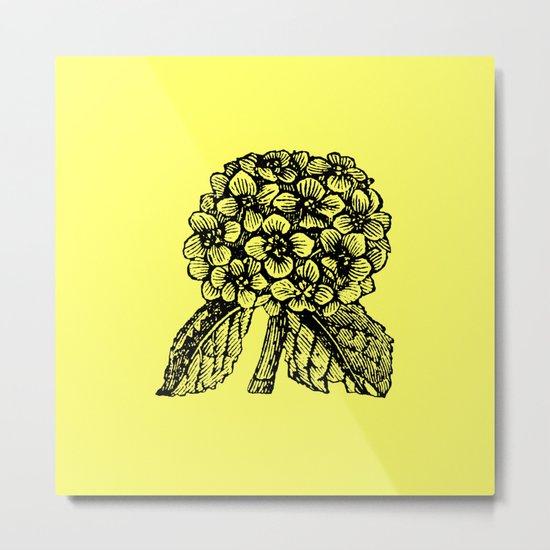 Yellow Hydrangea Metal Print