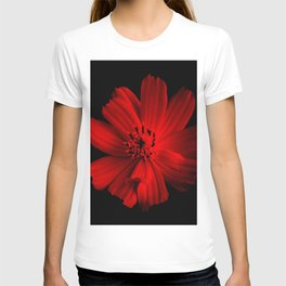 RED - 100418/2 T-shirt