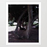 Haunted Grove Art Print